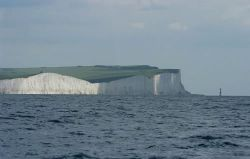 Alcyon and limestone cliffs